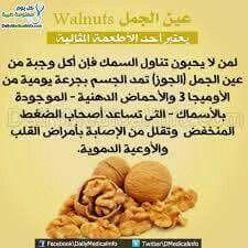 عين الجمل Health Benefits Of Walnuts Dog Food Recipes Food Animals