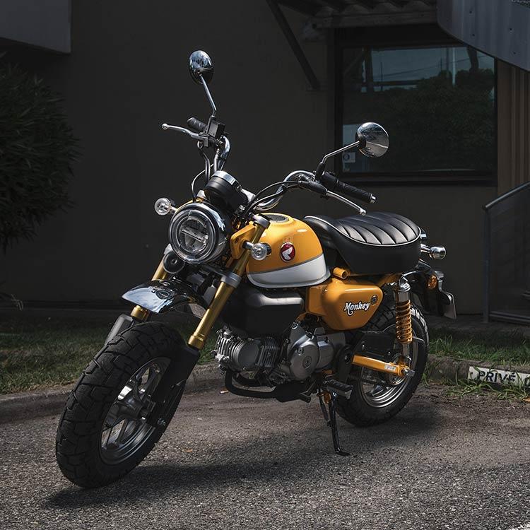 2019 Monkey Gallery Honda Honda Grom Honda Honda Motorcycles