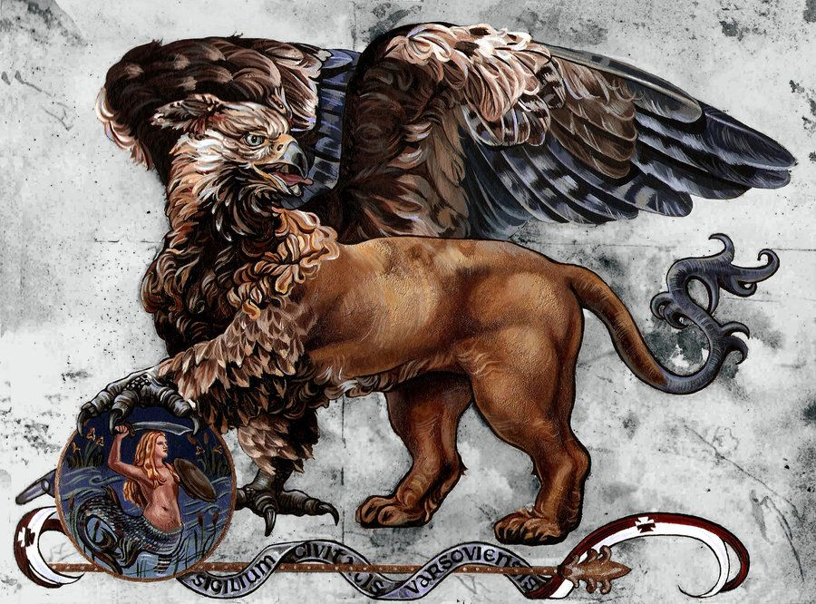Griffin Mythology Mythical Griffin Wallpaper Warsaw Griffin By