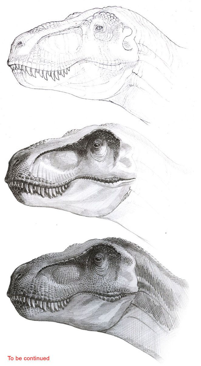 Tyrannosaurus progress by atrox1 on DeviantArt