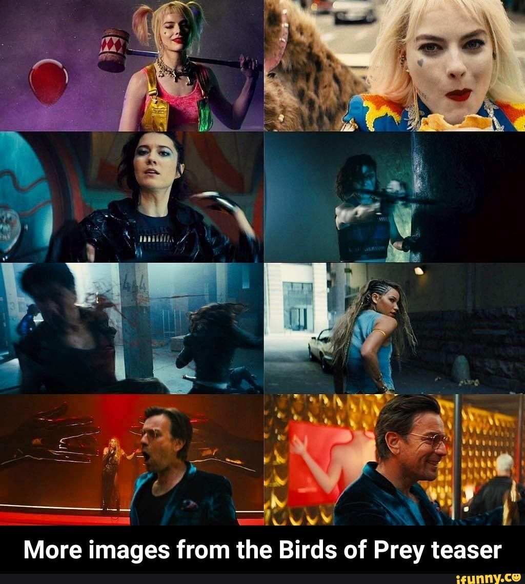 More Images From The Birds Of Prey Teaser More Images From The Birds Of Prey Teaser Ifunny Birds Of Prey Prey Birds