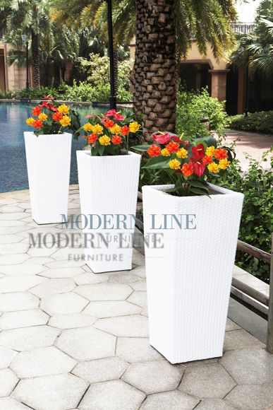Click To Enlarge Front Door Plants Tall Planters Planters