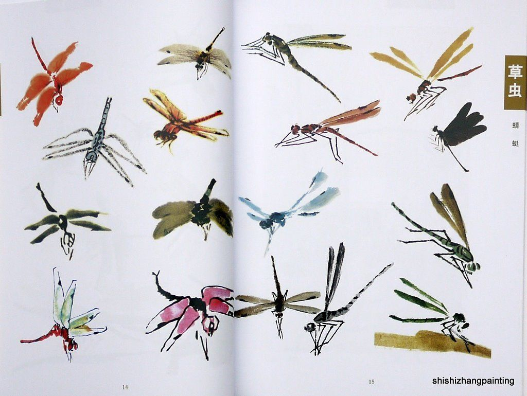 Chinese painting book learn to paint insects new art birds