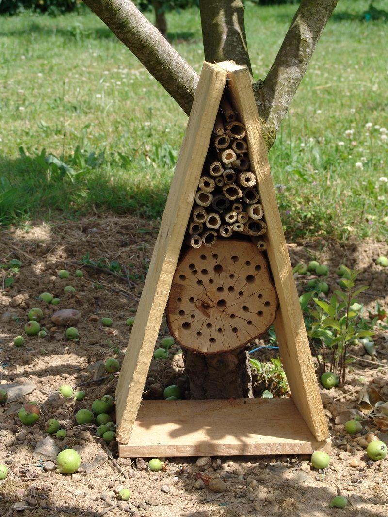 abri pour abeilles solitaires id es maisons d 39 insectes abri insectes et nichoir. Black Bedroom Furniture Sets. Home Design Ideas