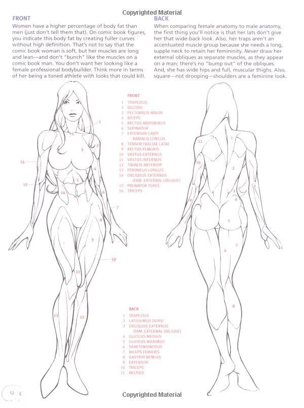 Pin By Lszl Vajay On Mintapzok Pinterest Figure Drawing