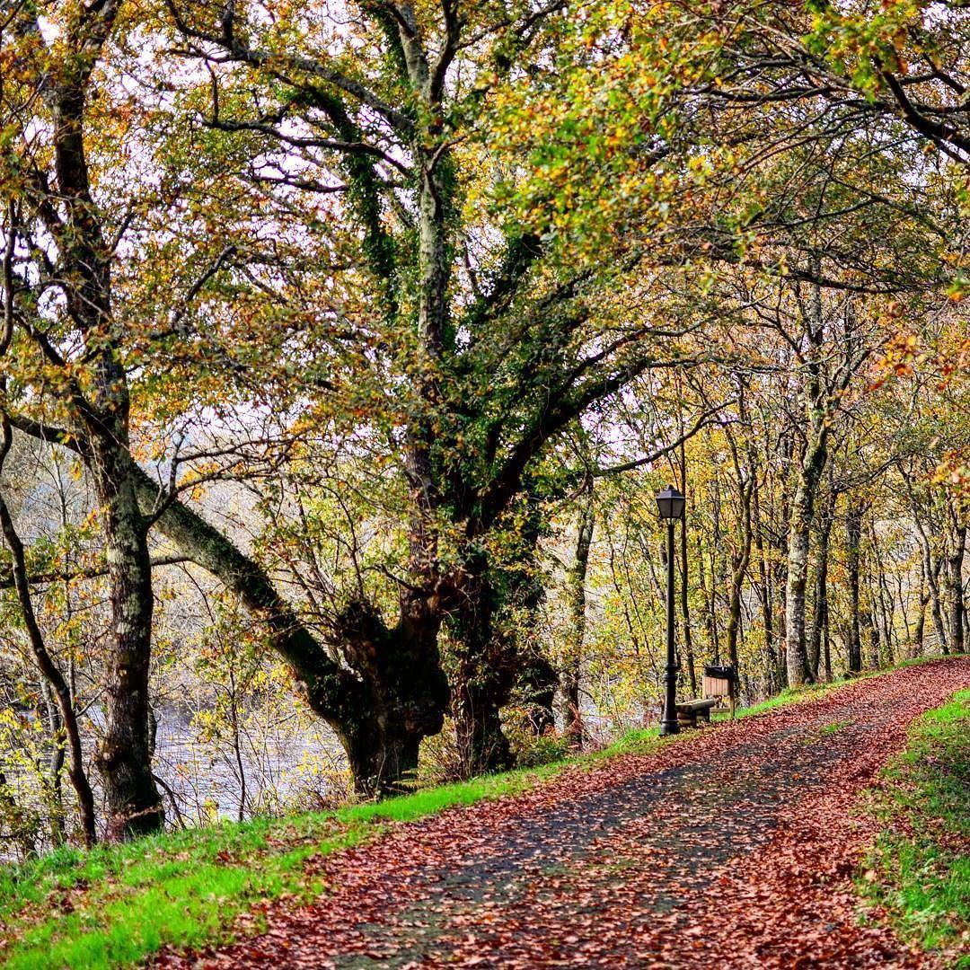 Preciosos rincones al lado de casa! Galicia es mágica