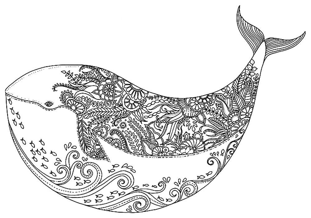 Антистресс кит | Рисунки, Зентангл и Раскраски