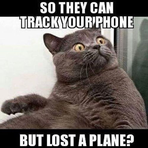 Malaysia-Airlines-tumblr_n2tvnnUAbf1rbqsvno1_500_zps8f1d4114.jpg (500×500)