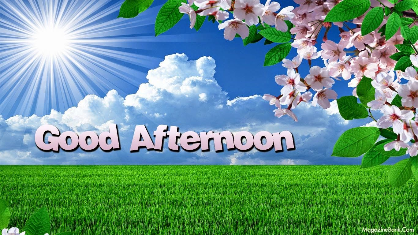 Good Afternoon Sunshine (With images) | Sms message, Good ...