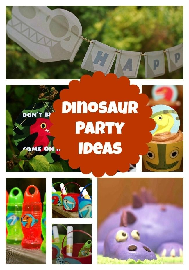 Prehistoric Party Dinosaur Birthday for a 2 Year Old Spaceships