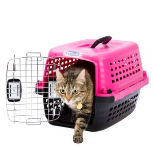 Petmate® Compass™ Fashion Carrier Carriers Cat