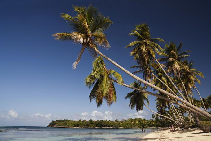 Top 10 Dominican Republic Experiences Pinterest Dominican