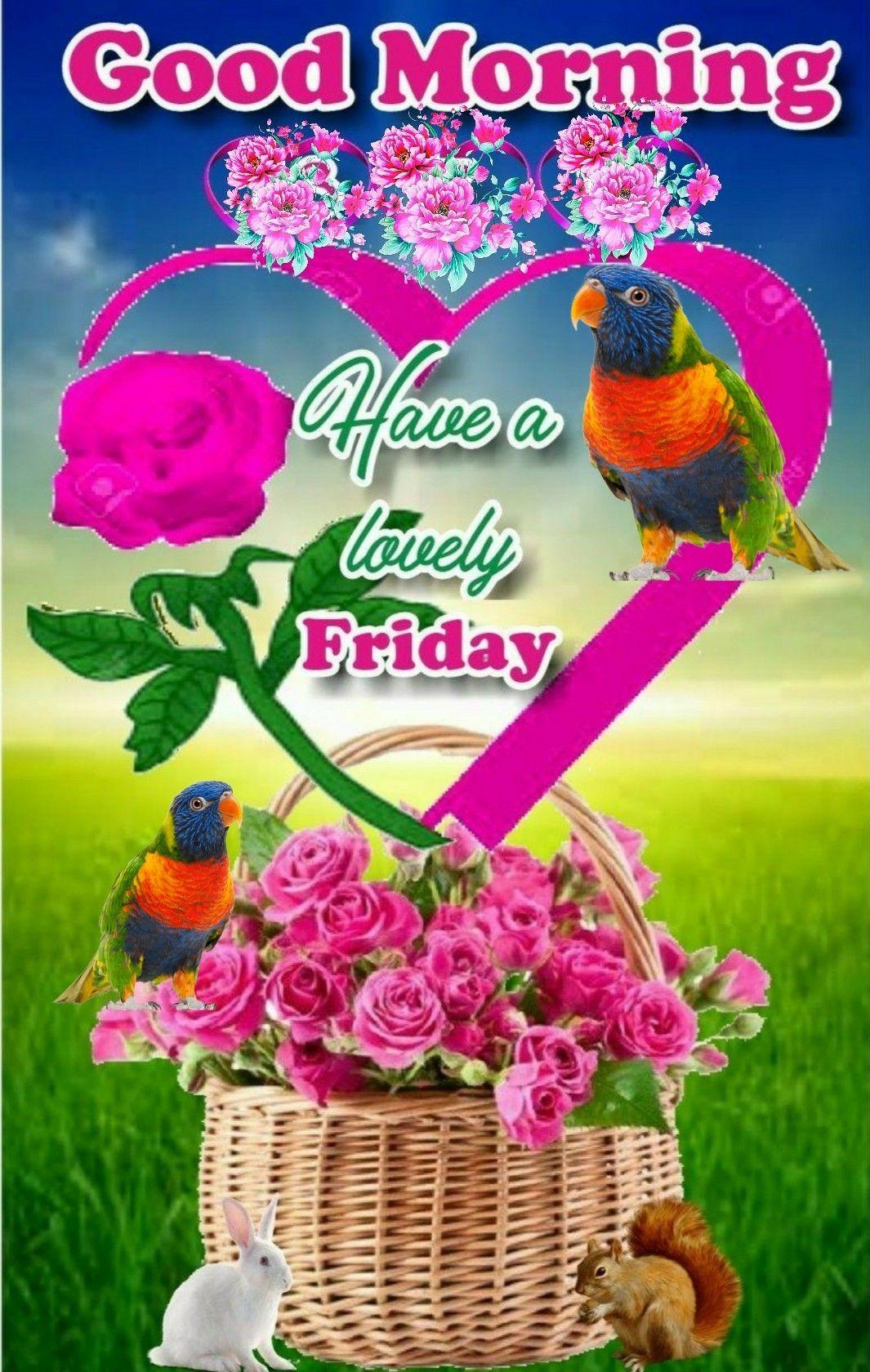 Pin By Moustafa Halik On Sharechat Images Good Morning Happy Friday Good Morning Friday Friday Wishes