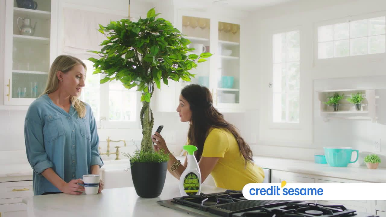 Video Credit Sesame Super Grow Your Credit Score Tv Commercial