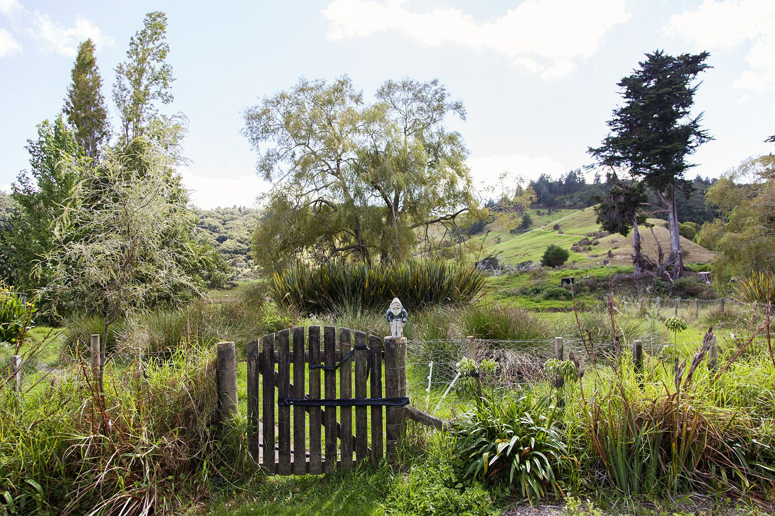 Matakana Farmers Market and the Puhoi Library | Wools of NZ ...