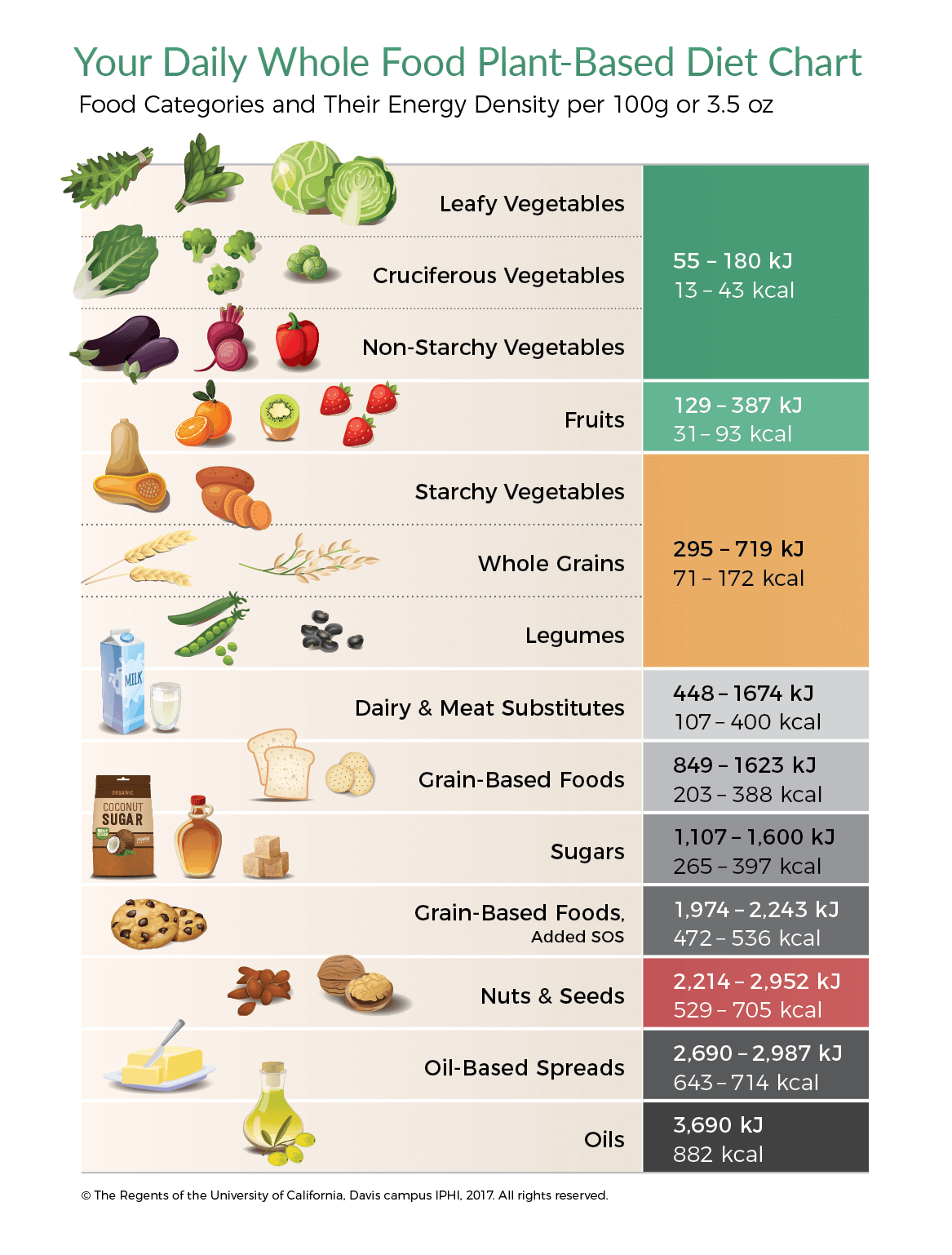 Daily Whole Food Plant Based T Chart Energy Density
