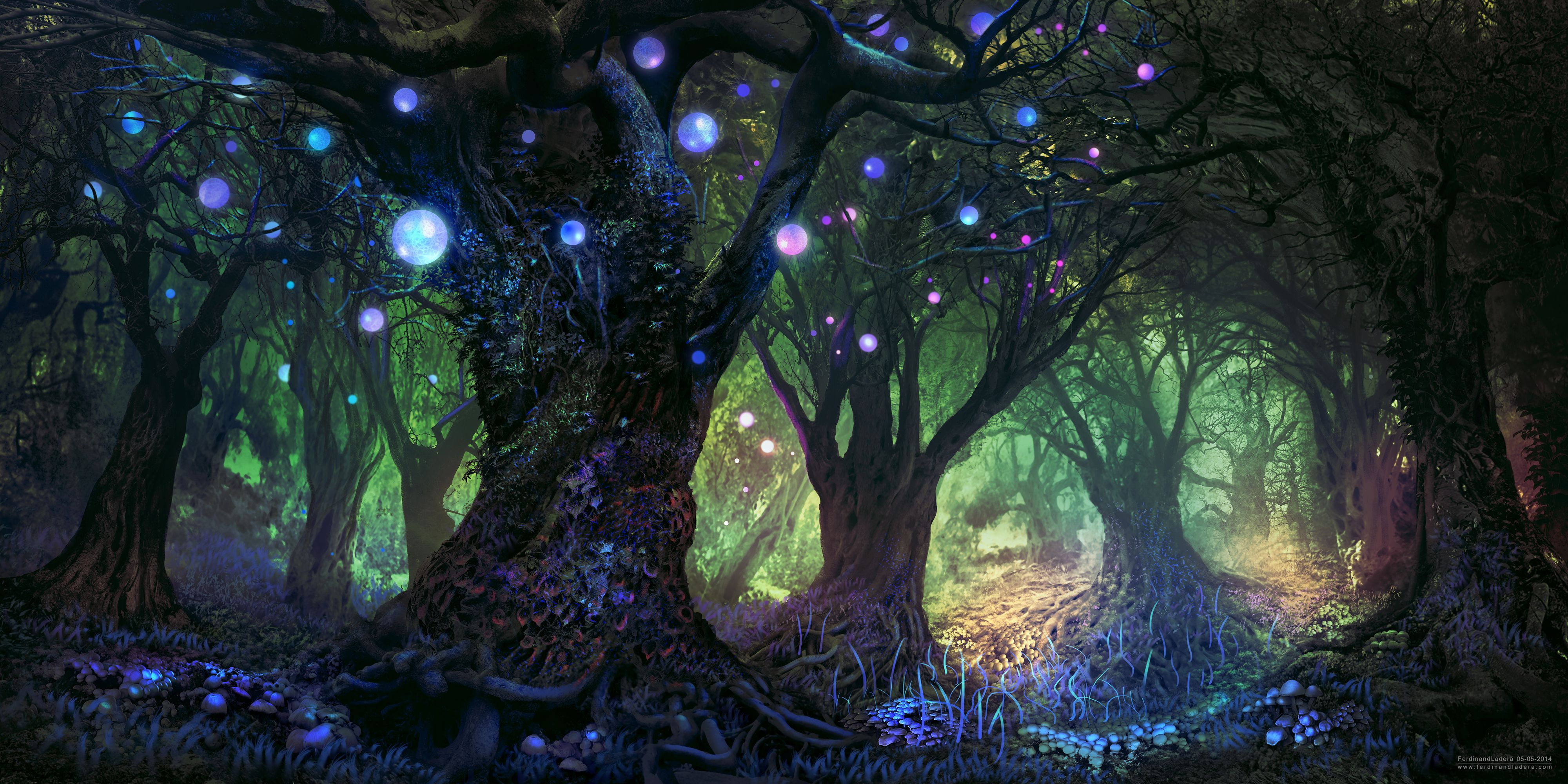 предложенном архиве картинки красивый волшебный лес этому может