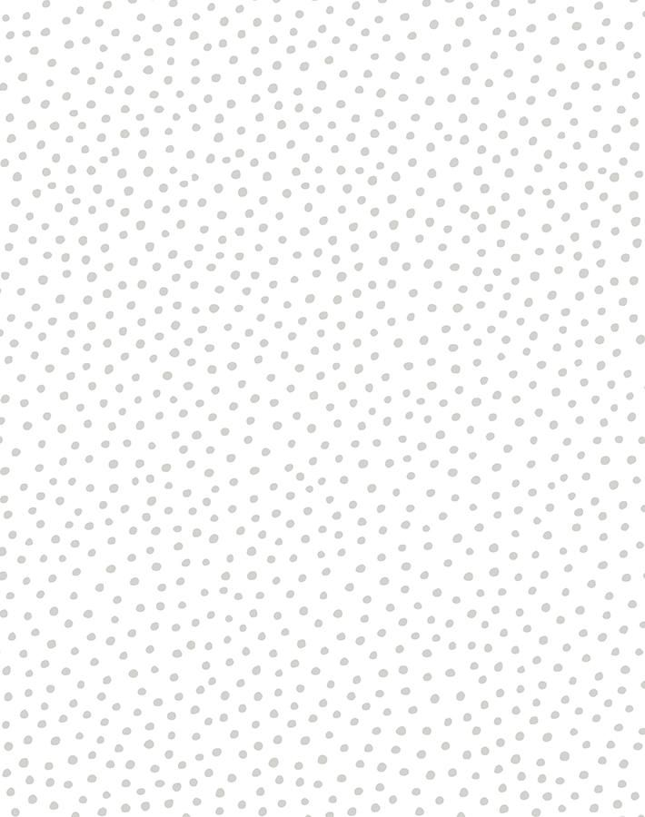Pebble Wallpaper