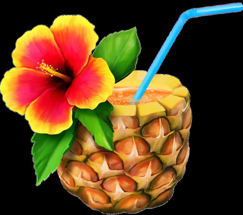 0 161734 E4f766a7 Xl คาแรคเตอร Tropical Luau Pineapple