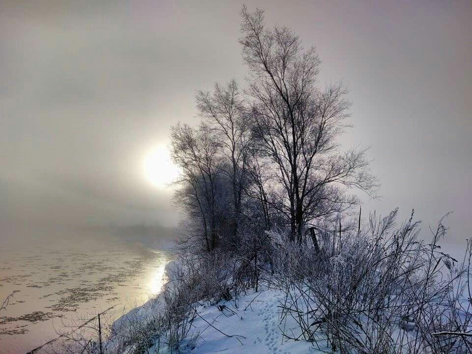 Sunrise with a dash of fog
