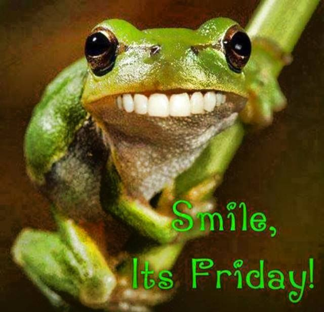 Are You Guys Laughing Yet Good Morning Funny Its Friday Quotes Funny Good Morning Quotes