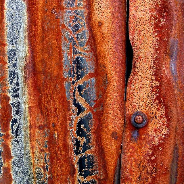 rust from Tina Negus Flickr page...how beautiful it is!
