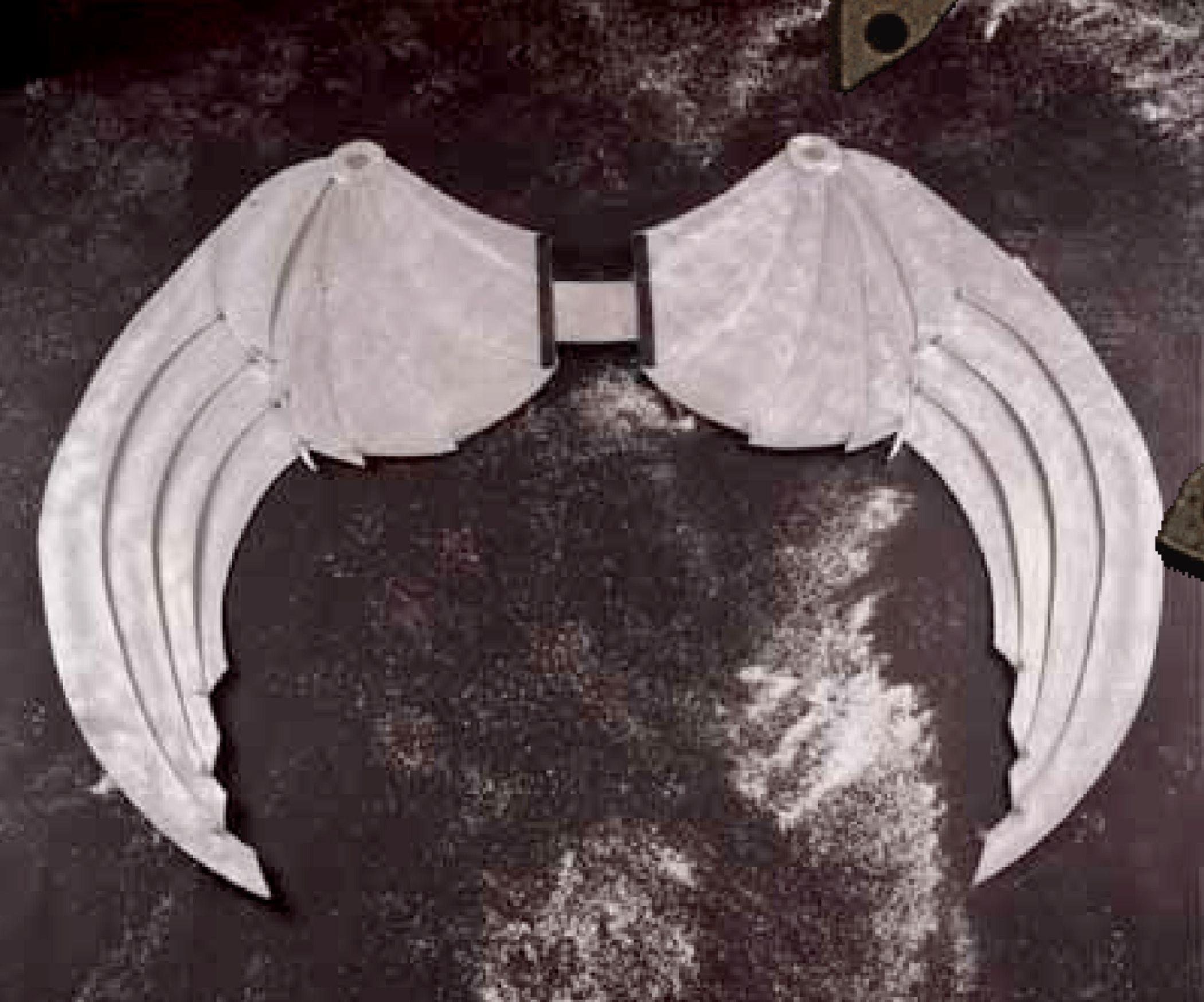 costume wings (aluminum) © by VALENTIM QUARESMA-PT