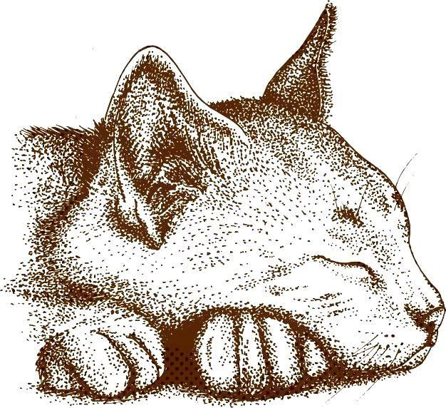 Puntillismo dibujo de gato Vector Premiu  Premium VectorYou can find Naturaleza and more on our websitePuntillismo dibujo de gato Vector