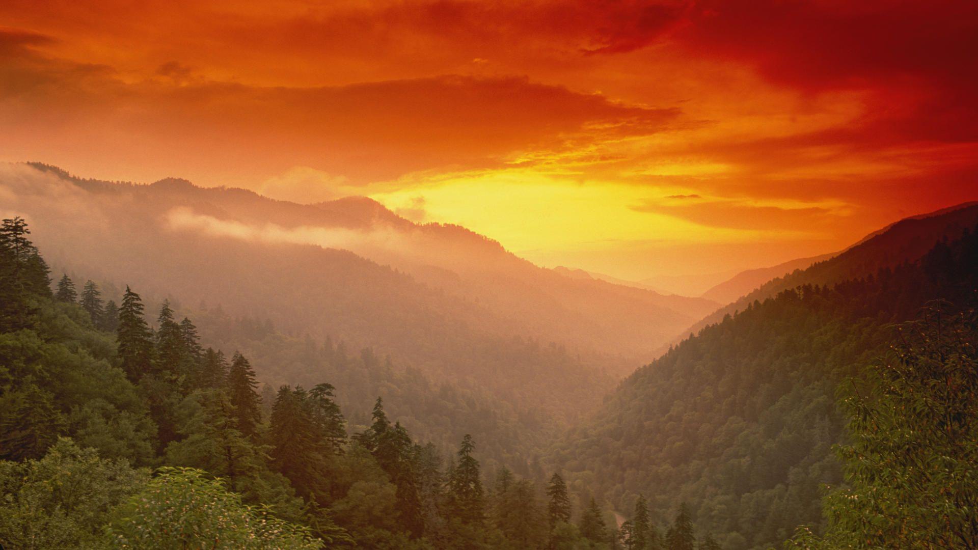 Smoky Mountains Wallpaper Smoky Mountains Great Smoky Mountains National Park National Parks
