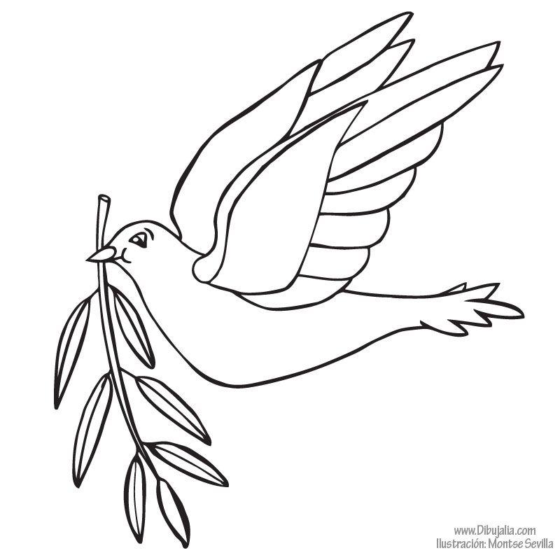 paloma paz libre - dibujalia - dibujos para colorear