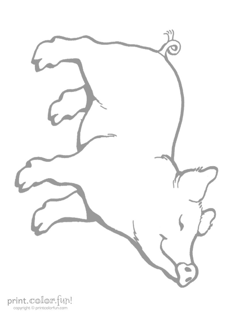 Download And Print Your Page Here Avec Images Coloriage Animaux Cerf Dessin Animaux De La Ferme