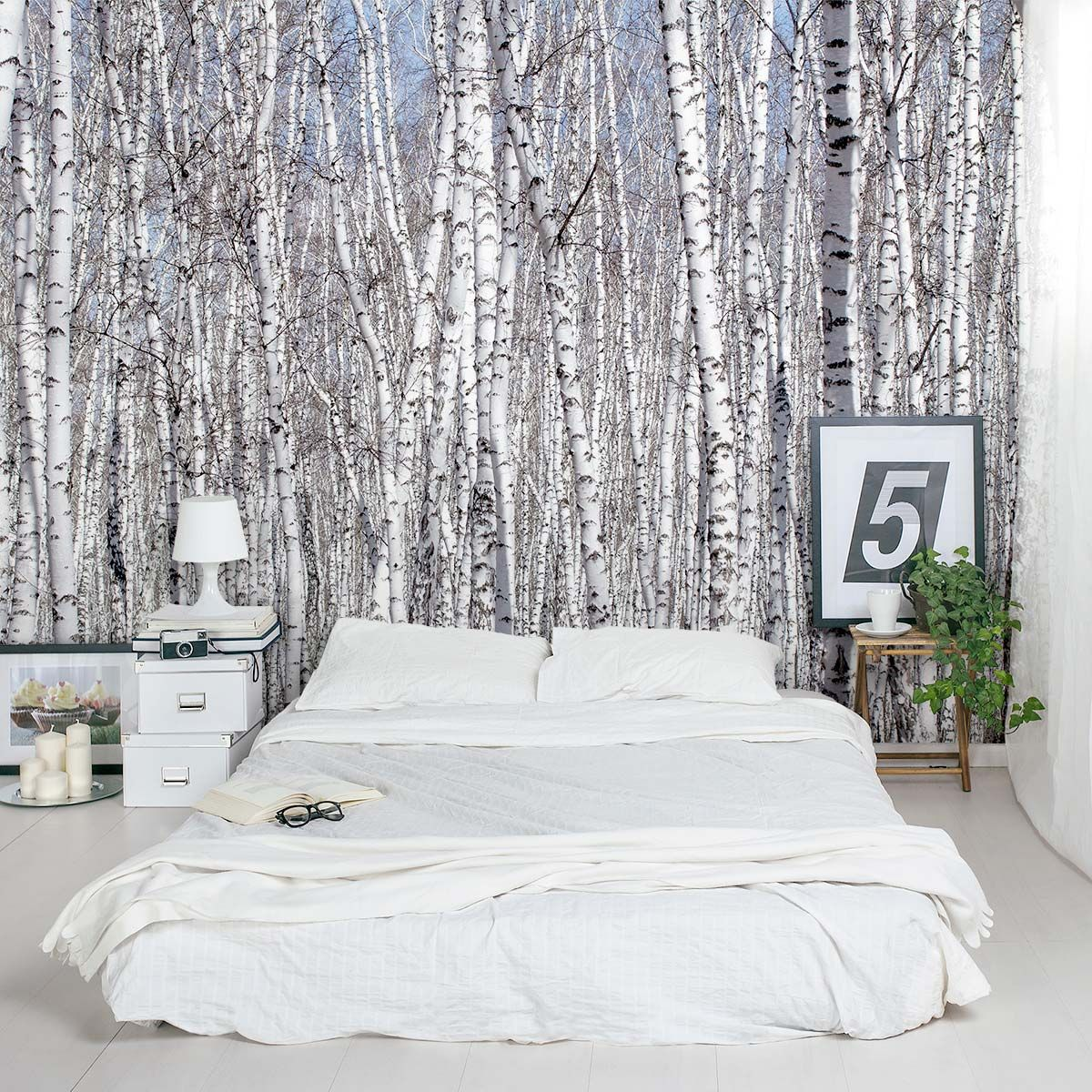 White birch trees wall mural things i want for a future for Birch tree forest wall mural