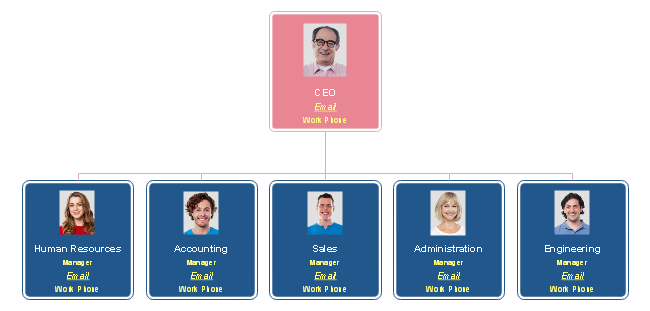 Companies That Use Functional Organizational Chart Split Their Departments Into Functional Areas For Examp Org Chart Organizational Chart Software Development