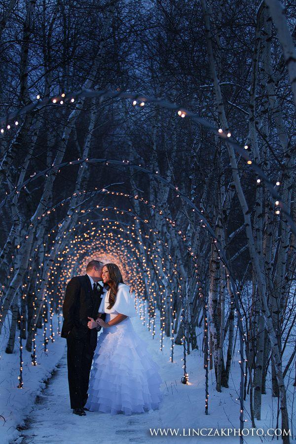 Weddings Wedding Bridal Shower Dream Wedding Winter Wedding