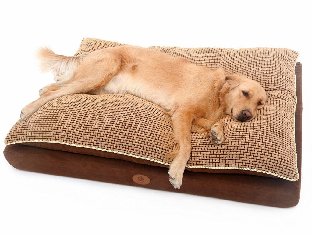 The 30 Best Large Dog Beds For Your Large Breed Dogs With Images