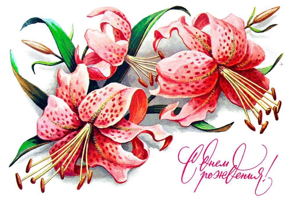 Открытки лилии с днем рождения