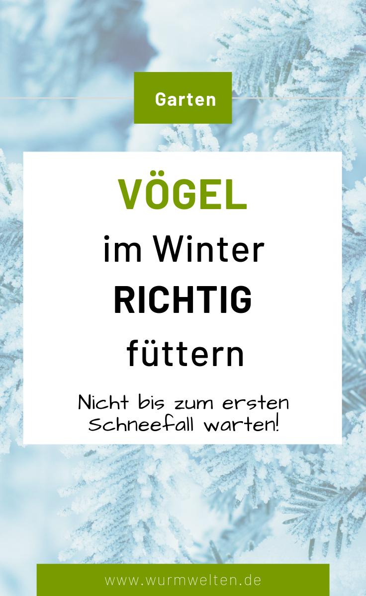 Wie Futtert Man Vogel Richtig Im Winter Gartenthema Vogel Im Winter Natur Haus