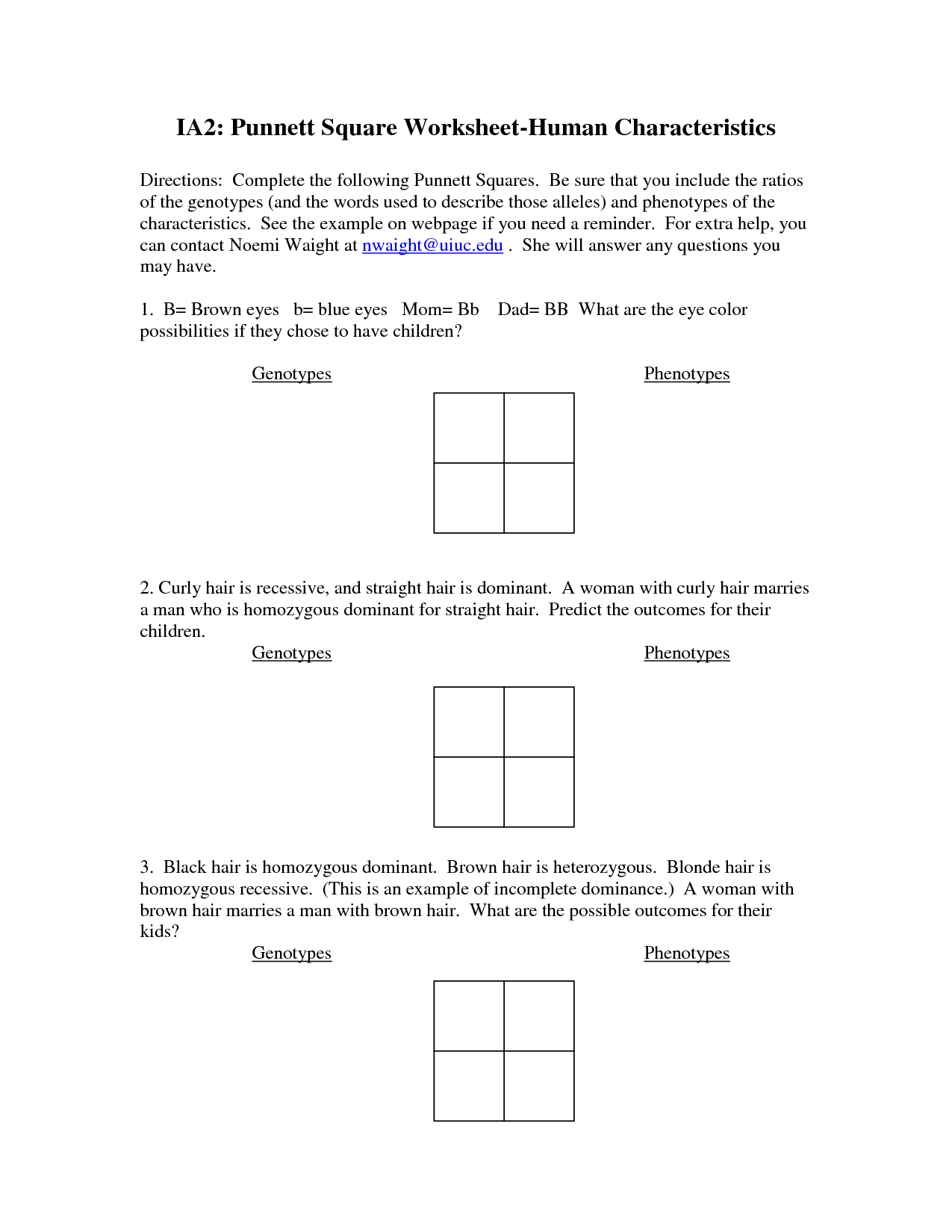 Punnett Square Worksheet Answers