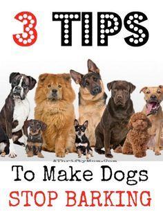 3 Tips To Make Dogs Stop Barking Pets Hacks Dog Breeds