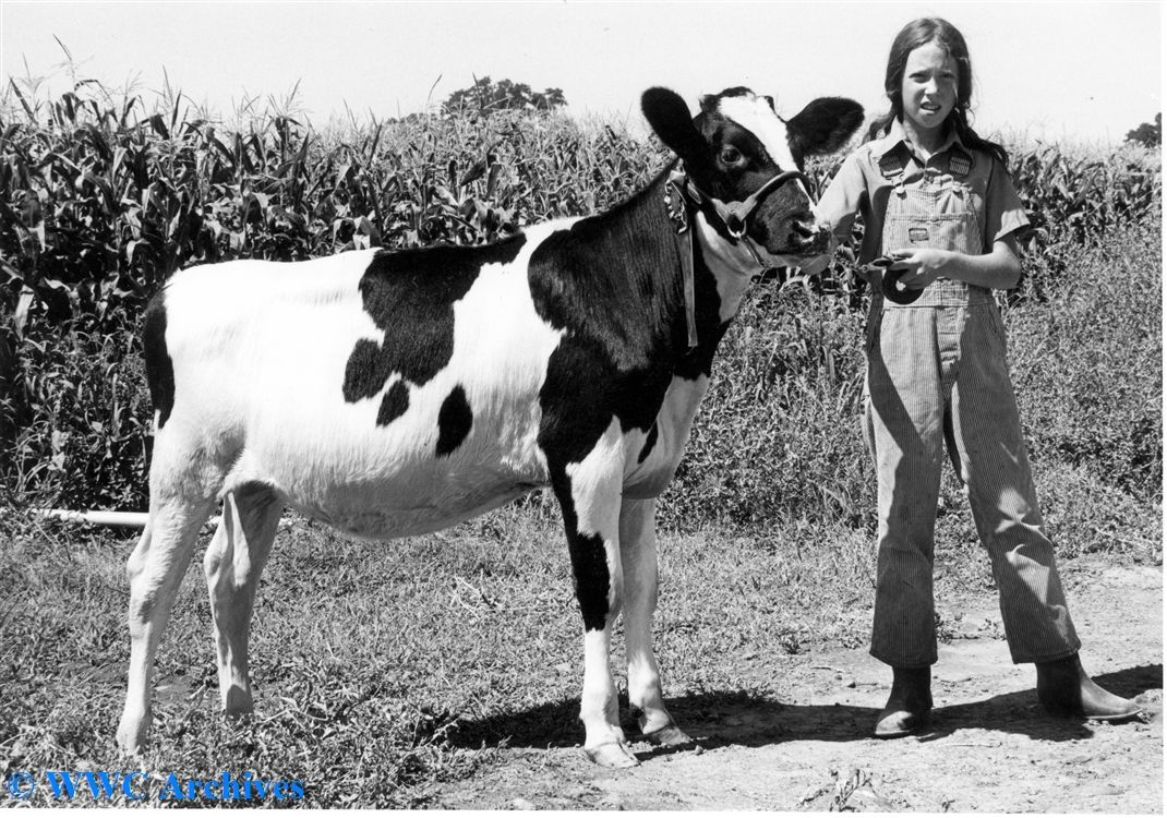 Did you know WWU used to own a dairy farm? Providing