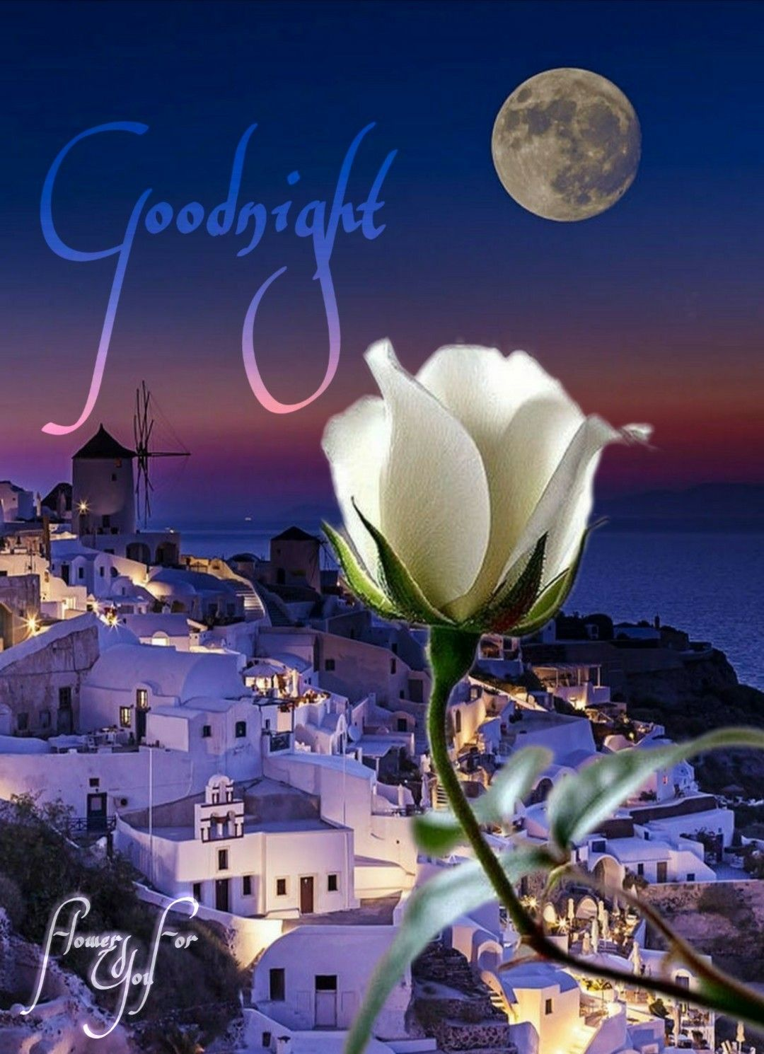 Link Buonanotte Goodnight Page Facebook Flowers For You Created By Tiziana Mosso Buonanotte Buona Notte Notte
