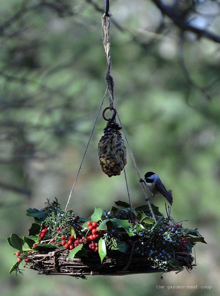 Diy Winter Wreath Bird Feeder Bird Feeders 400 x 300