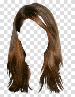 Woman S Brown Hair Wig Hairstyle Brown Hair Wig Transparent Background Png Clipart Wig Hairstyles Cornrows With Box Braids Black Hair Wigs