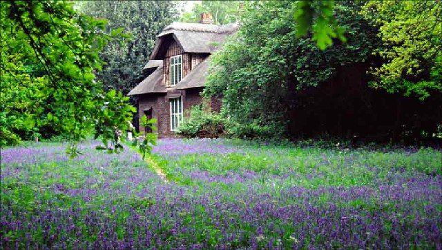 Historic Cottages In The Uk Kew Gardens Country Cottage Garden English Bluebells