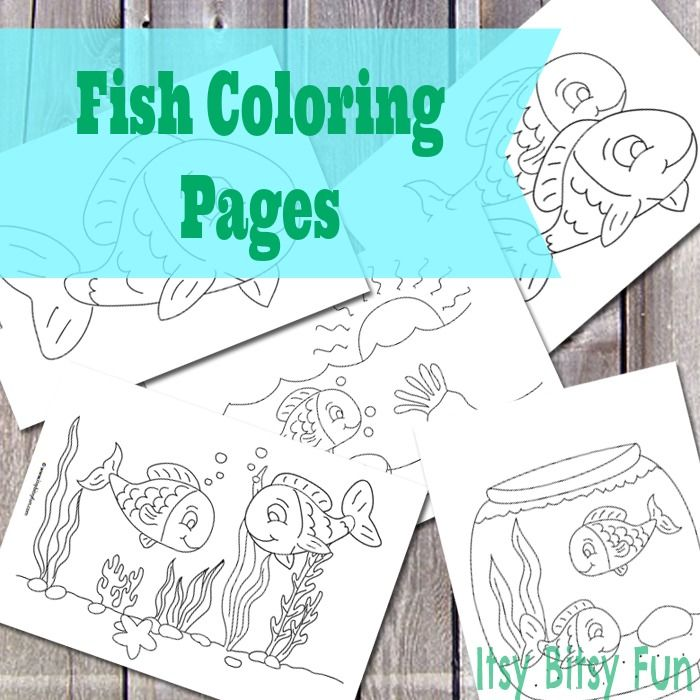 Fish Coloring Pages   Fish, Free and Ocean