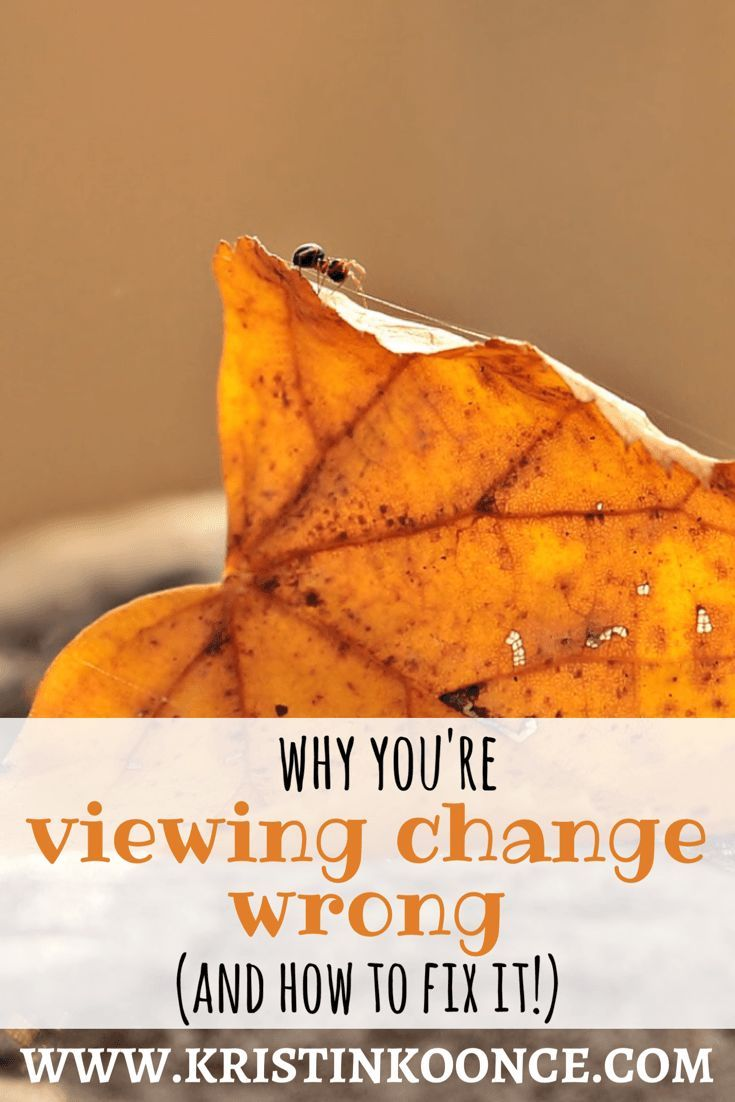 Quote On Change Cool Why You're Viewing Change Wrong And How To Fix It  Season Quotes .