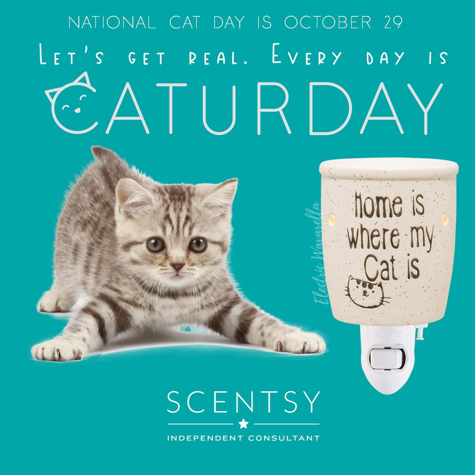 National Cat Day 10/29 in 2019 Scentsy, National cat day
