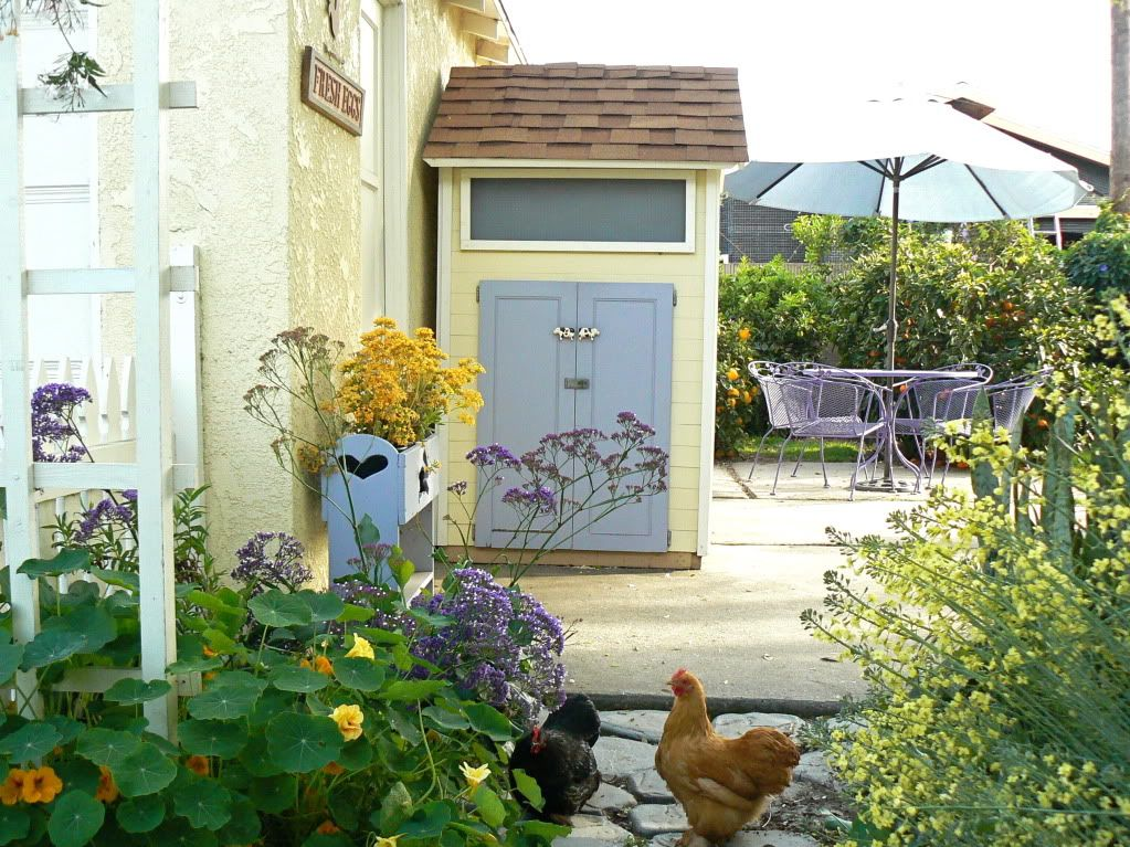 Cottage Style Backyard Chicken Coop at hanburyhouse.com ...
