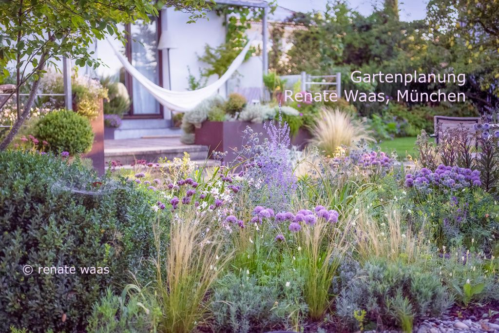 Garten Im Sommer Mit Graser Pflegeleichter Garten Garten Planen Gartengestaltung Pflegeleichter Garten
