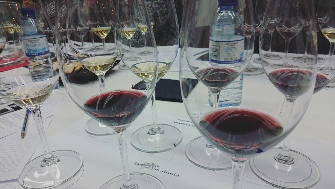Descubriendo el sur de Italia a través de sus vinos con @alacarta en @VVendimia